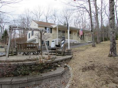 Waterboro Single Family Home For Sale: 16 Betty Lane