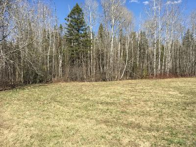 Presque Isle Residential Lots & Land For Sale: 75 Niles Road