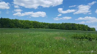 Connor Twp Residential Lots & Land For Sale: 9999 Haney Road