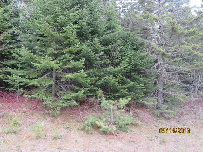 Westmanland Residential Lots & Land For Sale: 1176 Westmanland Road