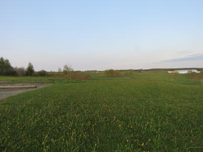 Caribou Residential Lots & Land For Sale: 467 Van Buren Road