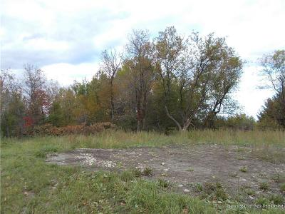 Caribou Residential Lots & Land For Sale: 1059 Albair Road