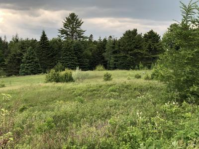 Sullivan Residential Lots & Land For Sale: 22 Farm Edge Road