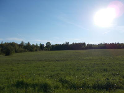 Caribou Residential Lots & Land For Sale: Bowles Road