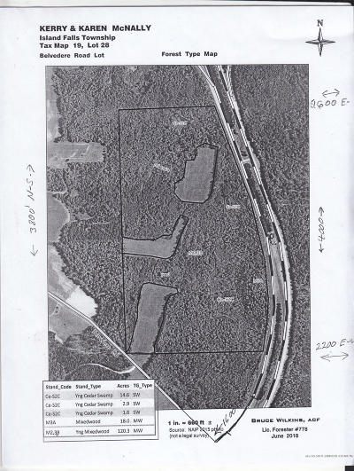 Island Falls Residential Lots & Land For Sale: map22L29B Left Side Of Blackfly Road