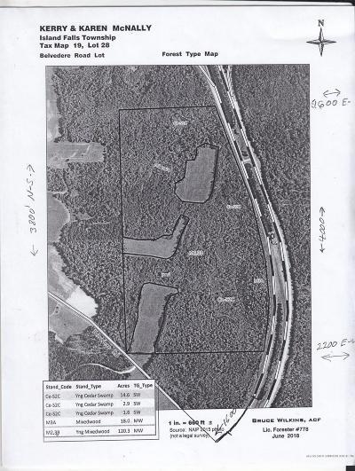 Island Falls Residential Lots & Land For Sale: Map22L29D Right Side Blackfly Road