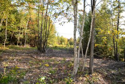 Residential Lots & Land For Sale: Lot 15 Tamarack Trail