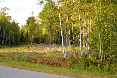 Residential Lots & Land For Sale: Lot 16 Tamarack Trail