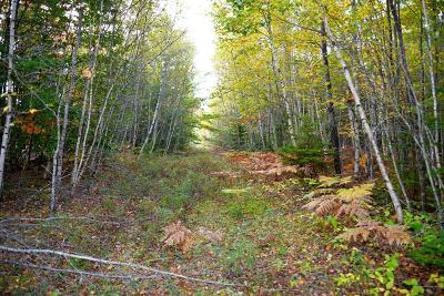 Residential Lots & Land For Sale: Lot 23 Tamarack Trail