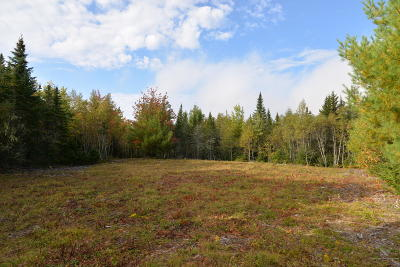 Residential Lots & Land For Sale: Lot 27 Tamarack Trail
