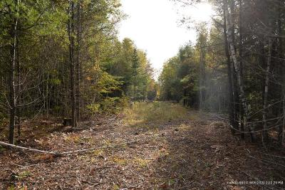 Residential Lots & Land For Sale: Lot 34 Tamarack Trail