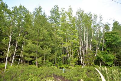 Residential Lots & Land For Sale: Lot 37 Tamarack Trail