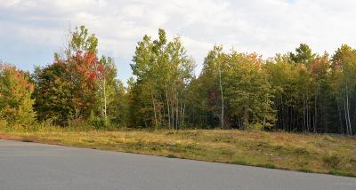 Residential Lots & Land For Sale: Lot 45 Tamarack Trail