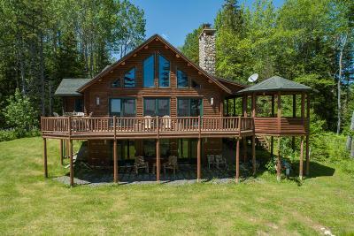 Gouldsboro Single Family Home For Sale: 1 Ives Landing Lane