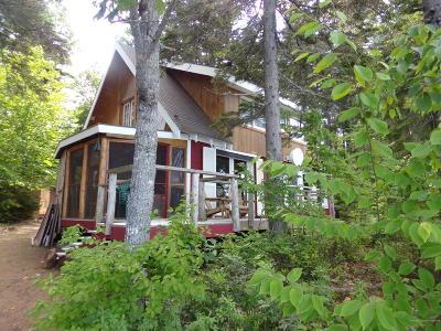 Single Family Home For Sale: 203 Slipper Lane