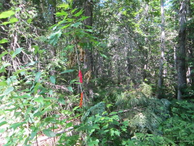 Sherman Residential Lots & Land For Sale: Off Gallison Road