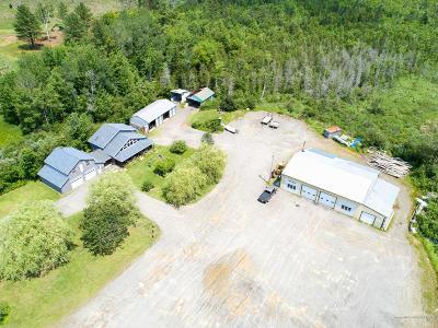 Single Family Home For Sale: 217 Greeleys Landing Road
