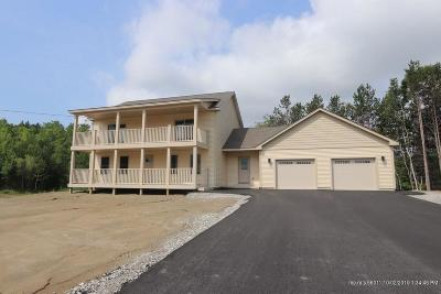 Single Family Home For Sale: 20 Perkins Drive