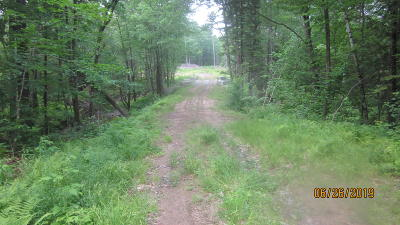 Residential Lots & Land For Sale: Hillman Ferry Road