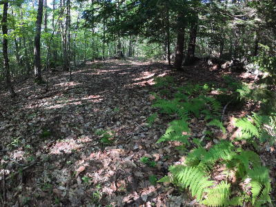 Residential Lots & Land For Sale: 0A Francis Wyman Road