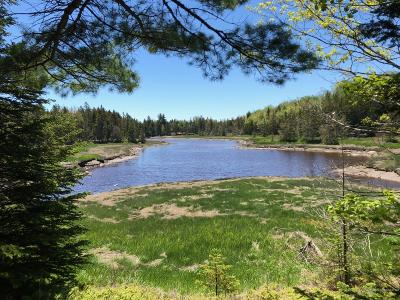 Gouldsboro Residential Lots & Land For Sale: A Chicken Mill Pond Road