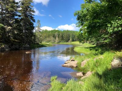 Gouldsboro Residential Lots & Land For Sale: B Chicken Mill Pond Road
