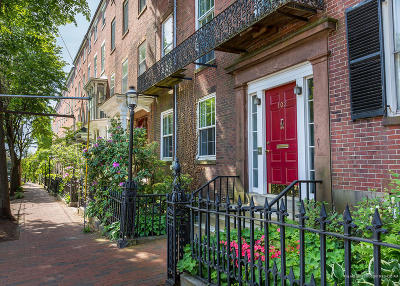 Portland Single Family Home For Sale: 102 Park Street