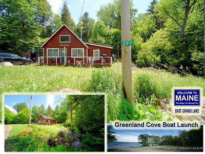 Danforth Single Family Home For Sale: 297 Sandy Beach Road