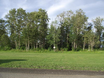 Residential Lots & Land For Sale: Map 14 Lot Island Road