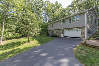 Windham Single Family Home For Sale: 19 Nelson Lane