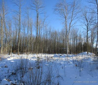Residential Lots & Land For Sale: 23 Williams Street