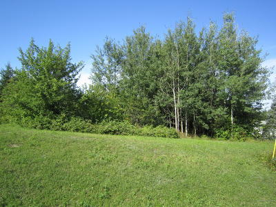 Presque Isle Residential Lots & Land For Sale: 8-16 University Street