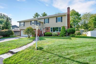 Portland Single Family Home For Sale: 54 Bartley Avenue
