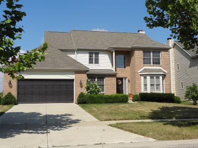 Ypsilanti Single Family Home For Sale: 8379 Jack Pine Drive