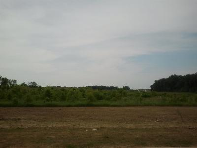 Ypsilanti Residential Lots & Land For Sale: 3350 Textile Road