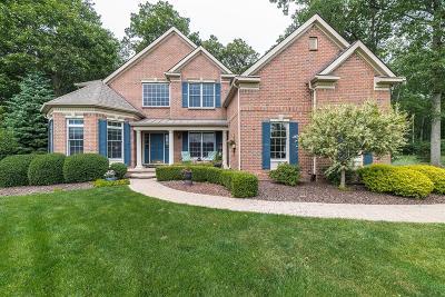Saline Single Family Home For Sale: 7560 Secretariat Drive
