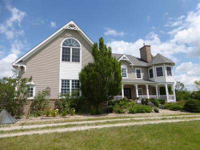 Ann Arbor Single Family Home For Sale: 5050 Pleasant Lake Road