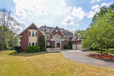 Dexter Single Family Home For Sale: 7743 Huron River Drive