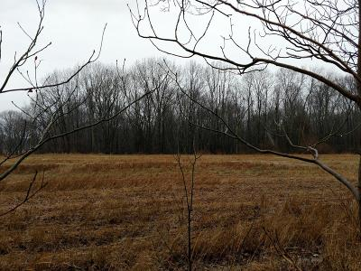 Chelsea Residential Lots & Land For Sale: Stofer #c Road