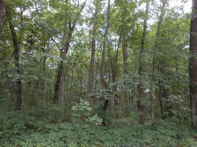 Chelsea Residential Lots & Land For Sale: Joslin Lake Road
