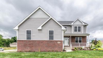 Saline Single Family Home For Sale: 10452 Gray Knoll Trail