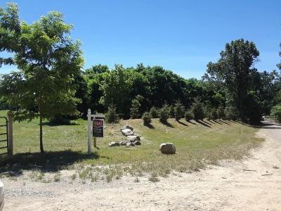 Whitmore Lake Residential Lots & Land For Sale: 3993 Storybook Lane