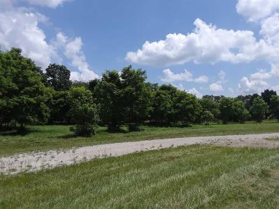 Whitmore Lake Residential Lots & Land For Sale: 3980 Storybook Lane