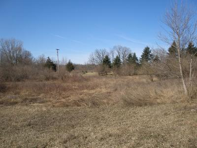 Chelsea Residential Lots & Land For Sale: McKinley Rd #3