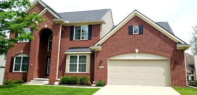 Saline Single Family Home For Sale: 740 West Castlebury Circle