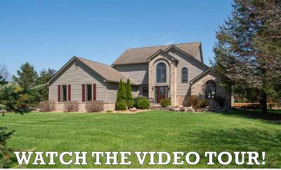 Dexter Single Family Home For Sale: 6220 Mast Road