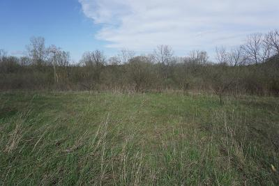 Chelsea Residential Lots & Land For Sale: South Lima Center Road
