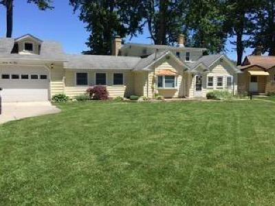 Whitmore Lake Single Family Home For Sale: 7940 Shady Beach Drive