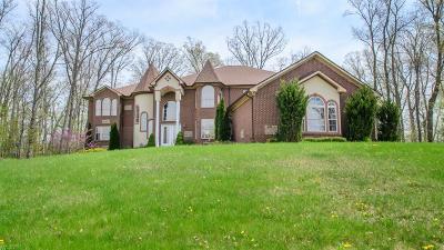 Saline Single Family Home For Sale: 3348 Oak Park Dr.