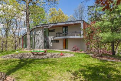 Ann Arbor Single Family Home For Sale: 1125 Elmwood Drive